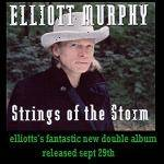 Cover Strings of the Storm