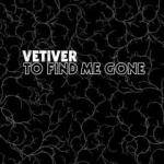 Cover To Find Me Gone