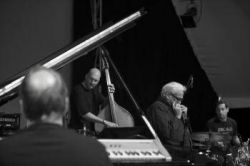 Toots Thielemans Quartet (foto: Jan Landau)