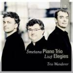 Cover Piano Trio & Elegies