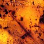 Cover Frozen in Amber